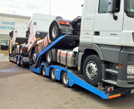 Vilkikų gabenimas autovežiu